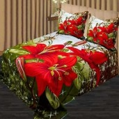http://www.arapshop.com/Double Size Cotton Bed Sheet 3 pcs 543