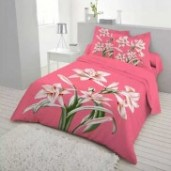 http://www.arapshop.com/Double Size Cotton Bed Sheet 3 pcs 544
